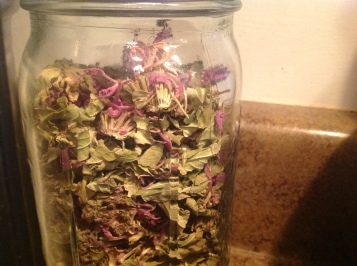 Dried Bee Balm